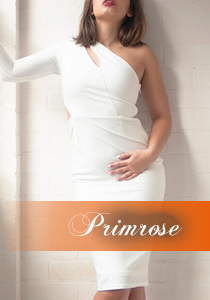 Primrose-profile-PP